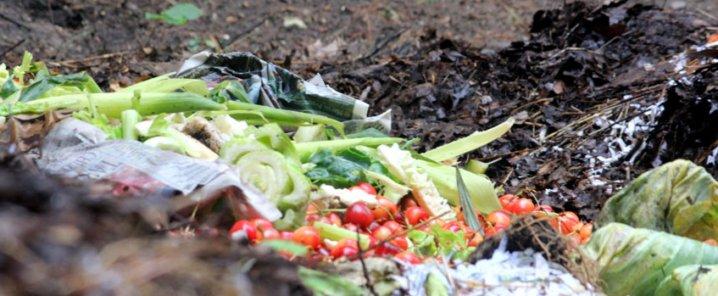 Veleni e microplastiche nei vegetali, la nostra inchiesta in Commissione Ue