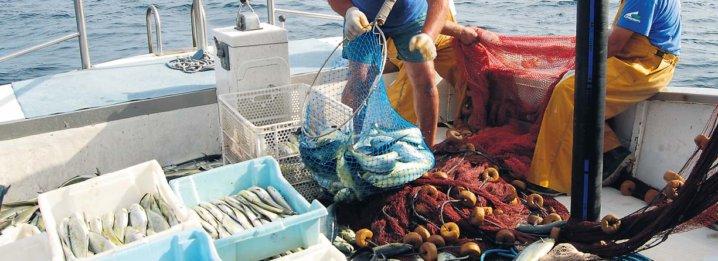 """""""Pesca sostenibile contro sfruttamento"""""""