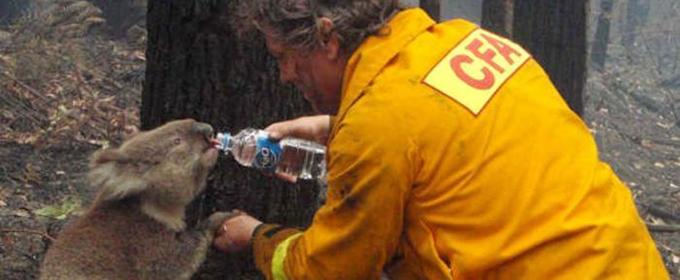 Australia in fiamme, arrestati 180 piromani