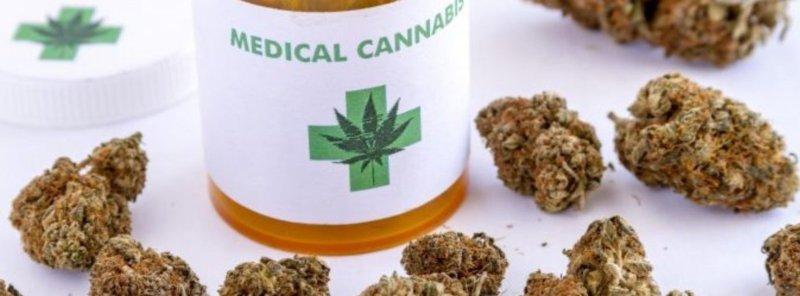 Cannabis gratis in Sicilia
