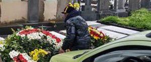 Rubava e vendeva fiori del cimitero