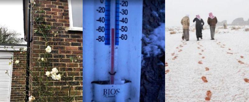 Rose a Londra e neve in Arabia: l'inverno è pazzo
