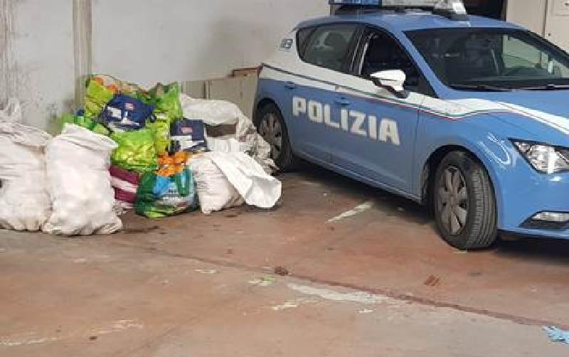Catania: ladri di arance in fuga