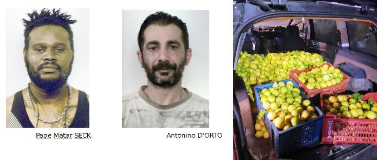 Troppi limoni in auto: arrestati nel Catanese