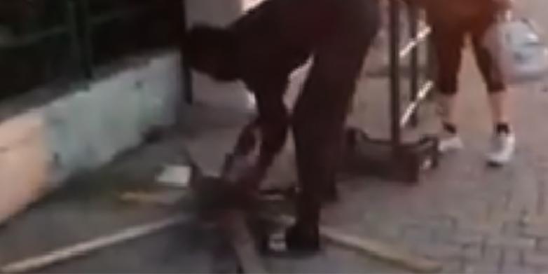 Uccide un gatto e lo cucina in strada