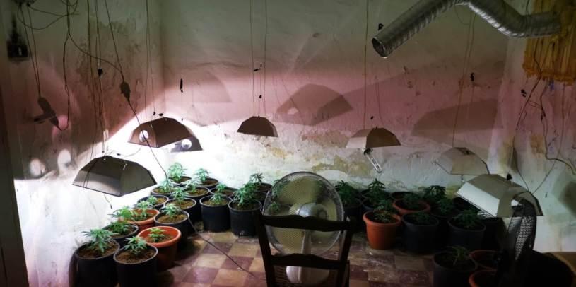 La serra in una casa abbandonata