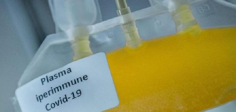 Covid, Catania cerca plasma iperimmune