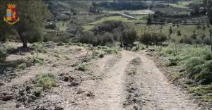 Allevatore morto a Nicosia, ipotesi omicidio